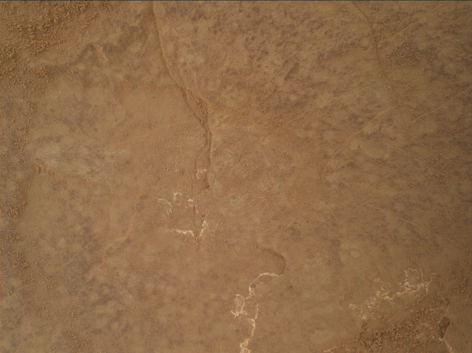 Nasa's Mars rover Curiosity acquired this image using its Mars Hand Lens Imager (MAHLI) on Sol 3025