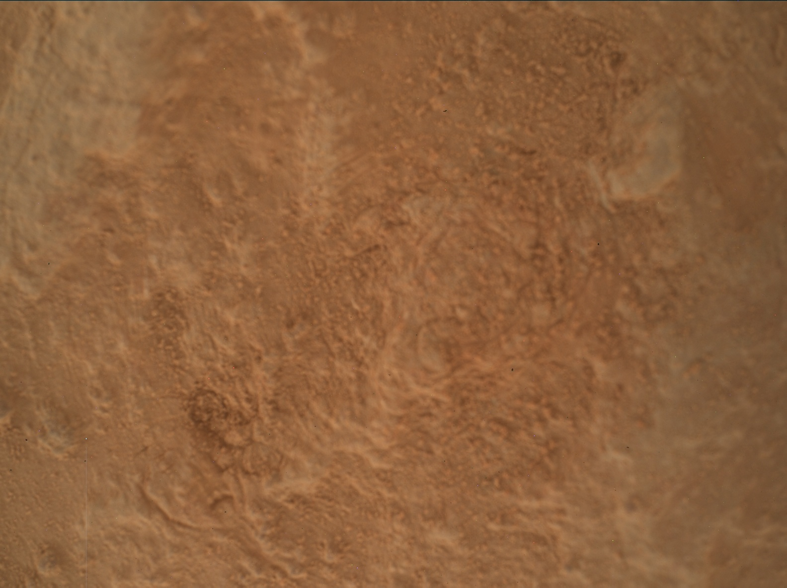 Nasa's Mars rover Curiosity acquired this image using its Mars Hand Lens Imager (MAHLI) on Sol 3167