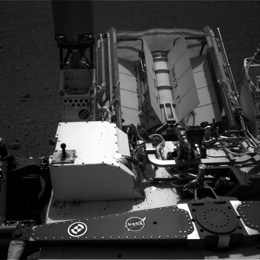 Curiosity Update – FLATULENT EXPRESSIONS OF TORTOISES