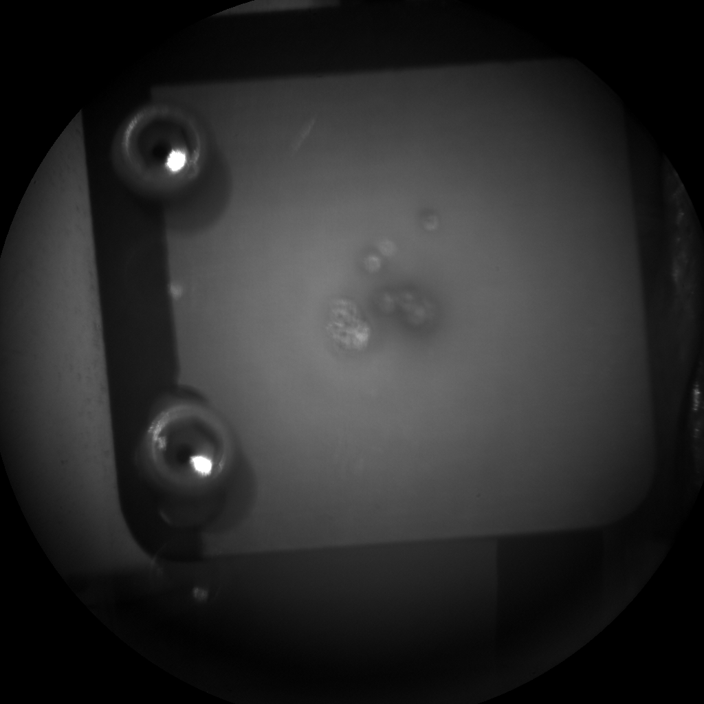 Nasa's Mars rover Curiosity acquired this image using its Chemistry & Camera (ChemCam) on Sol 187, at drive 0, site number 6