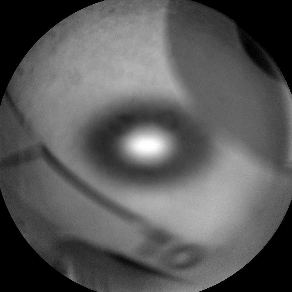 Nasa's Mars rover Curiosity acquired this image using its Chemistry & Camera (ChemCam) on Sol 310, at drive 658, site number 6