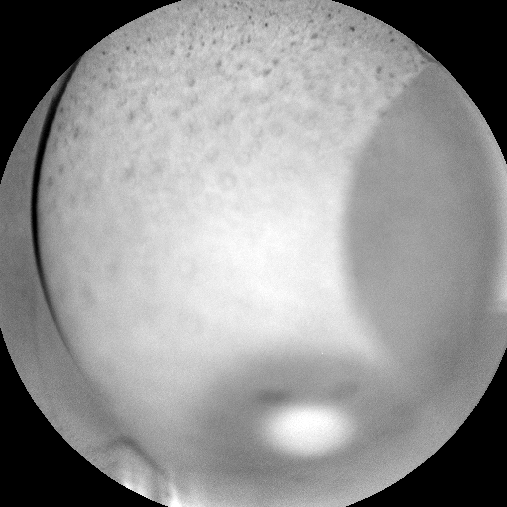 Nasa's Mars rover Curiosity acquired this image using its Chemistry & Camera (ChemCam) on Sol 350, at drive 0, site number 11