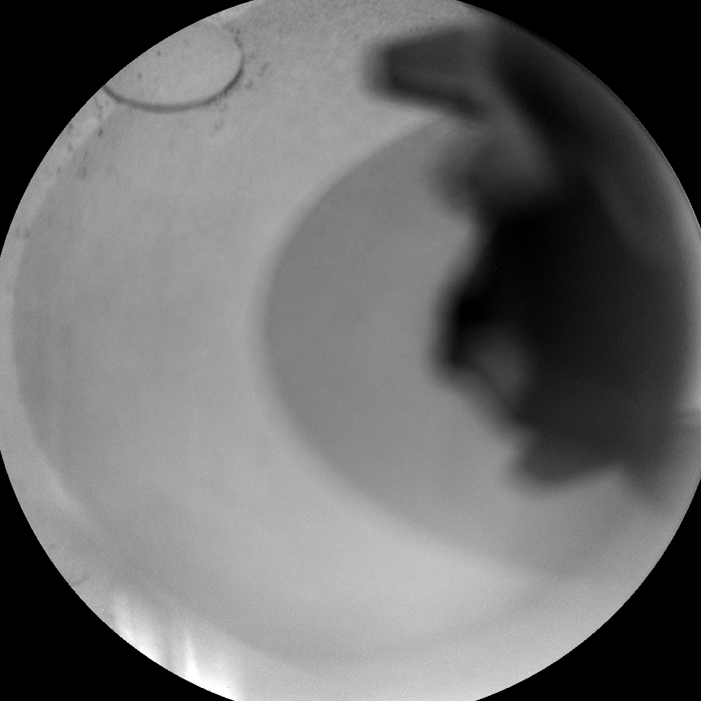 Nasa's Mars rover Curiosity acquired this image using its Chemistry & Camera (ChemCam) on Sol 384, at drive 0, site number 15