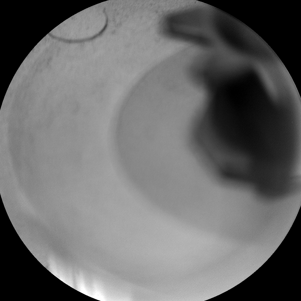Nasa's Mars rover Curiosity acquired this image using its Chemistry & Camera (ChemCam) on Sol 700, at drive 1552, site number 39