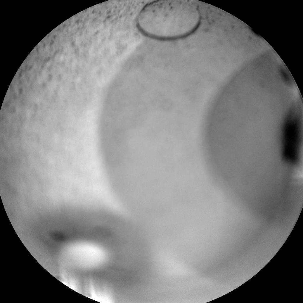 Nasa's Mars rover Curiosity acquired this image using its Chemistry & Camera (ChemCam) on Sol 718, at drive 1286, site number 40