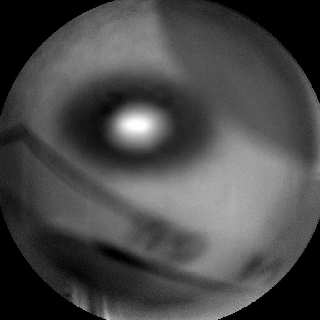 Nasa's Mars rover Curiosity acquired this image using its Chemistry & Camera (ChemCam) on Sol 754, at drive 1020, site number 42