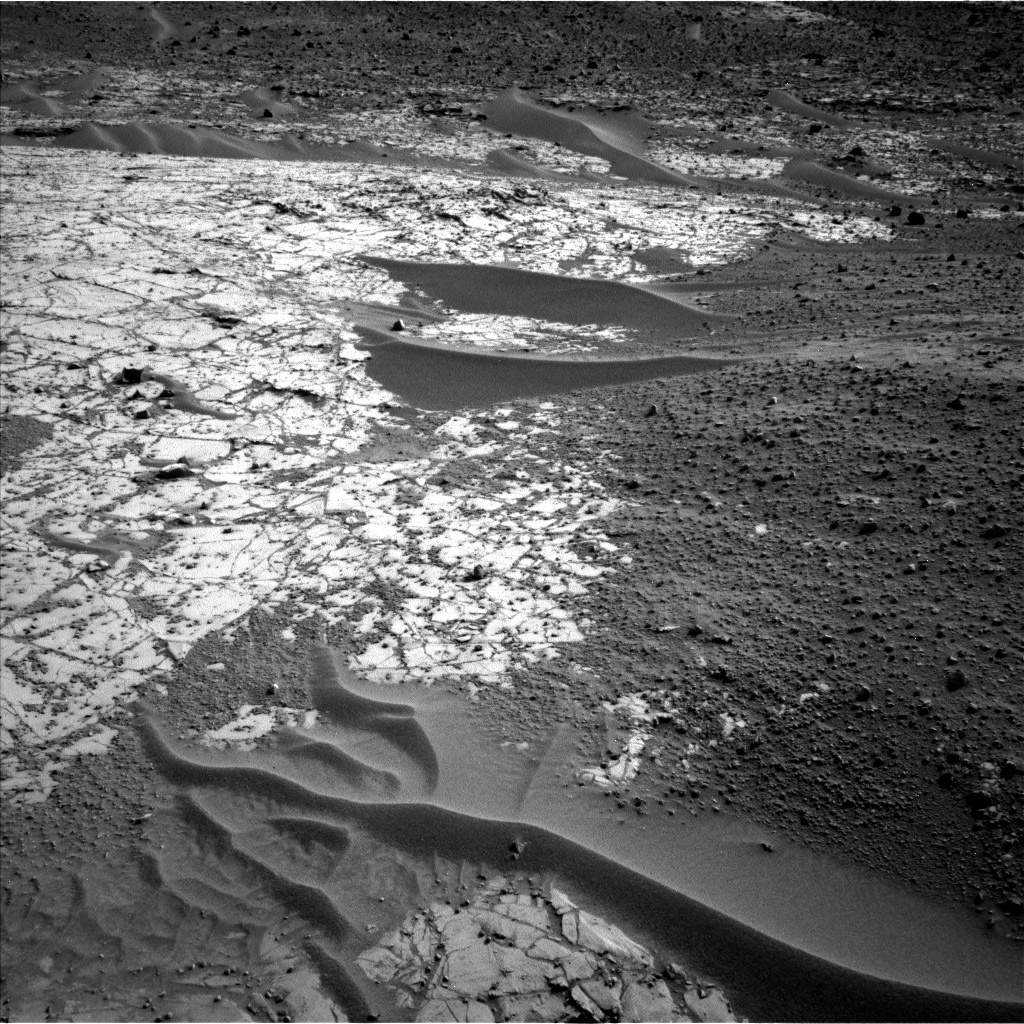 Rocks and sand ripples near the rover