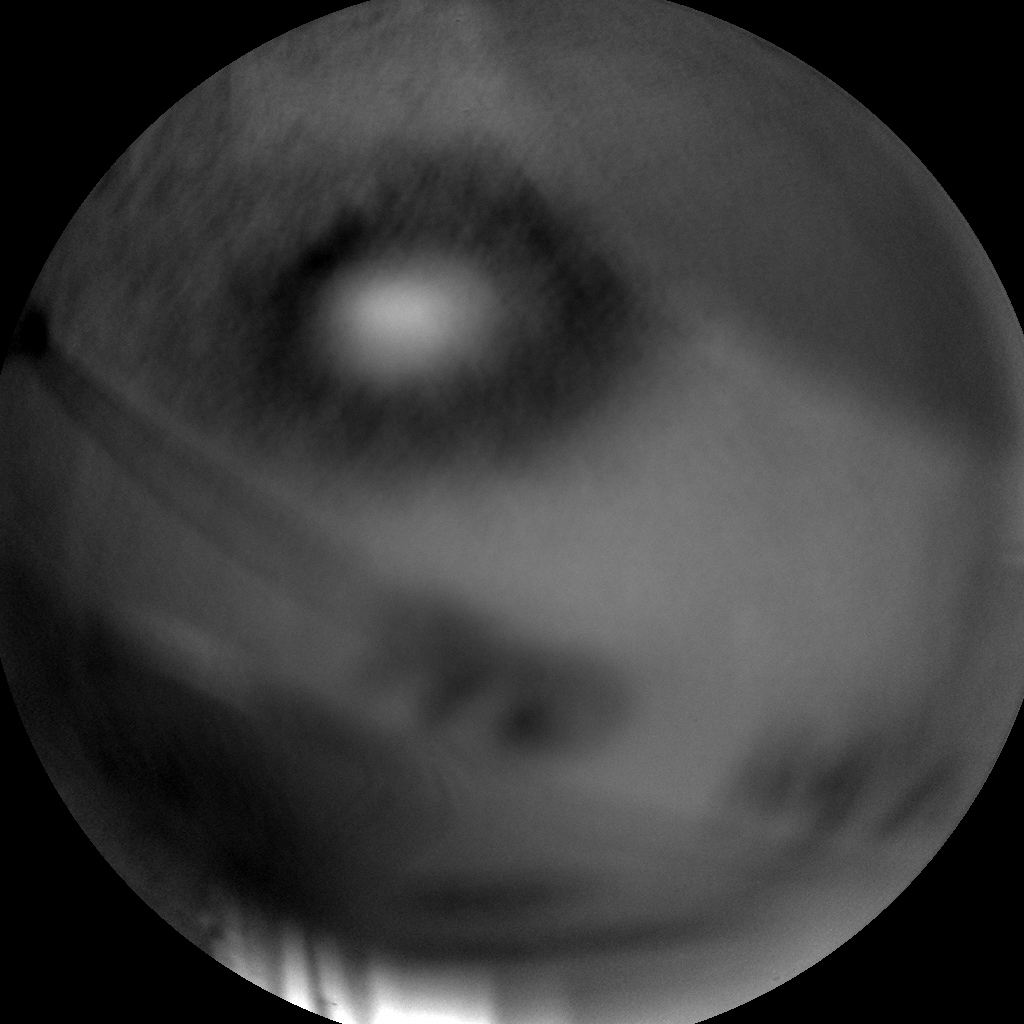 Nasa's Mars rover Curiosity acquired this image using its Chemistry & Camera (ChemCam) on Sol 1149, at drive 1116, site number 50