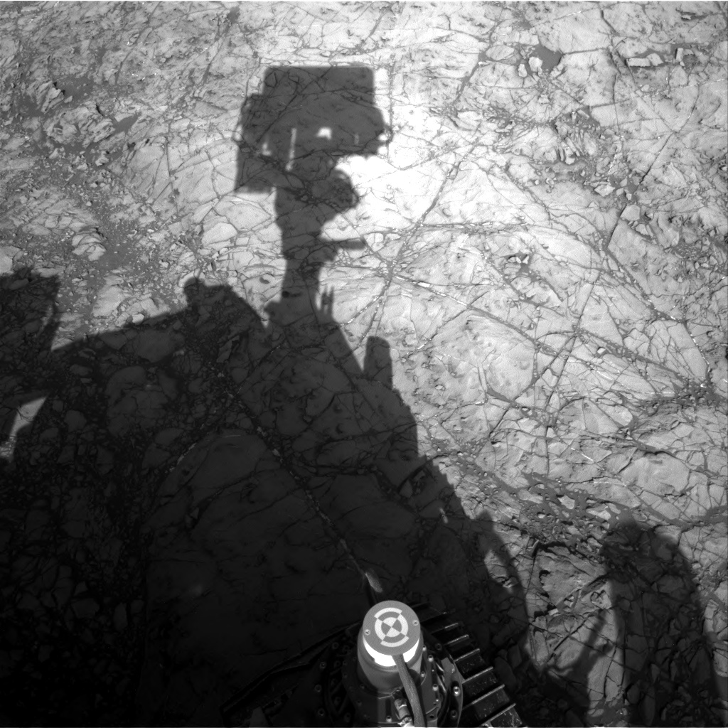 Nasa's Mars rover Curiosity acquired this image using its Right Navigation Camera on Sol 1187, at drive 2004, site number 51