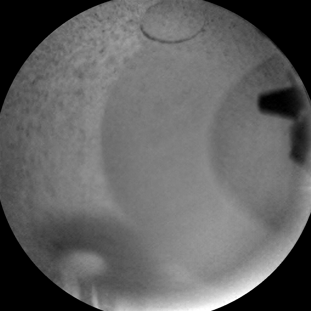 Nasa's Mars rover Curiosity acquired this image using its Chemistry & Camera (ChemCam) on Sol 1195, at drive 2704, site number 51