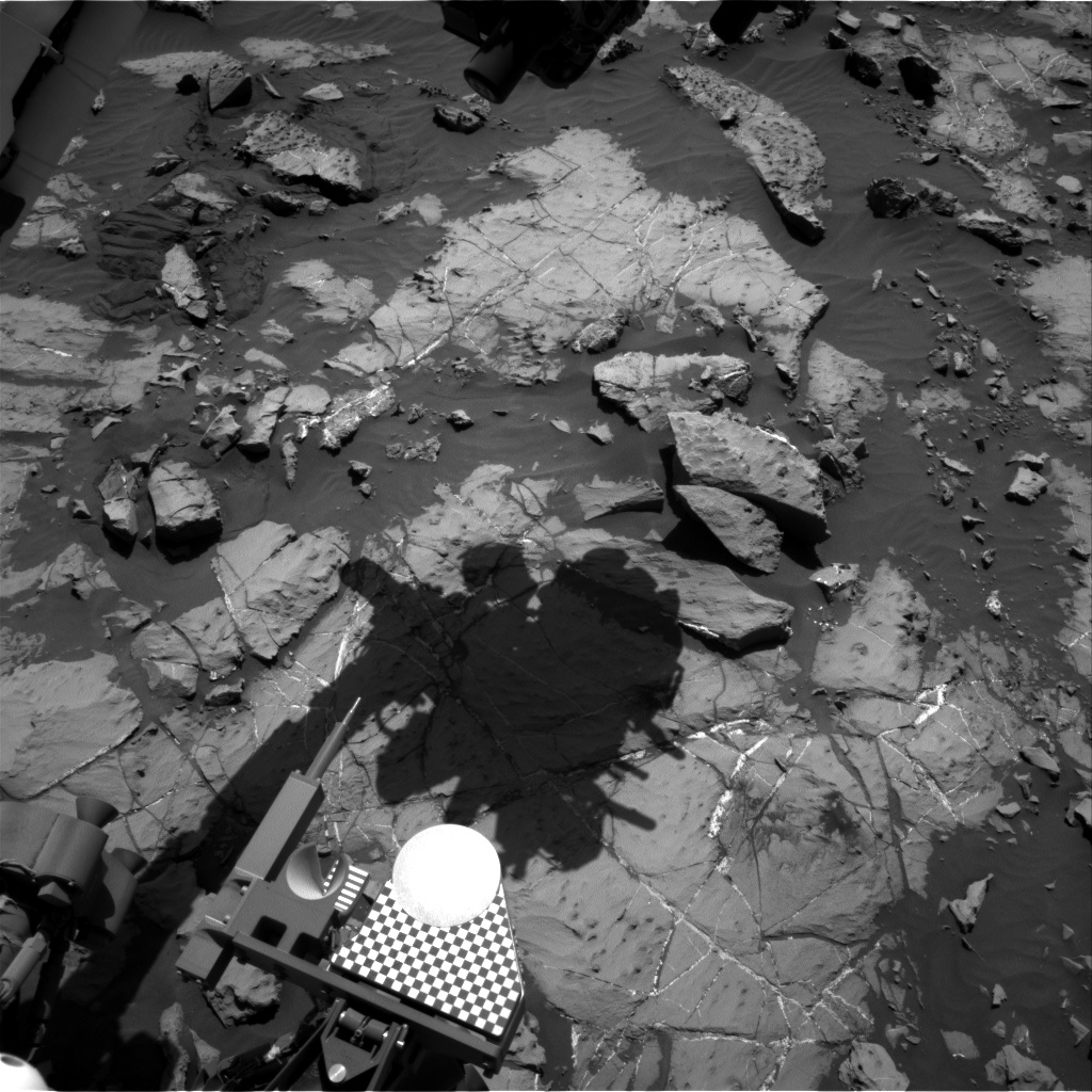 Nasa's Mars rover Curiosity acquired this image using its Right Navigation Camera on Sol 1251, at drive 2388, site number 52