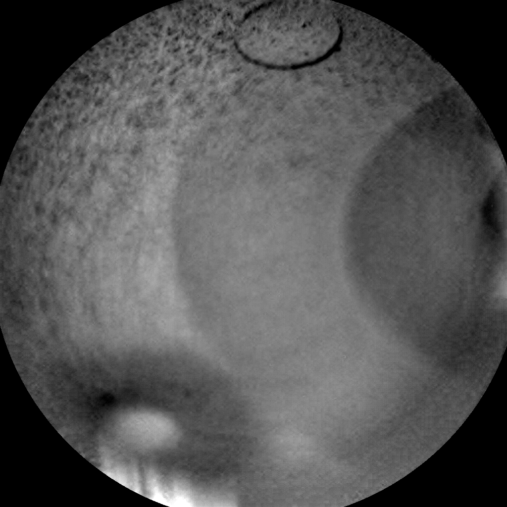 Nasa's Mars rover Curiosity acquired this image using its Chemistry & Camera (ChemCam) on Sol 1270, at drive 636, site number 53