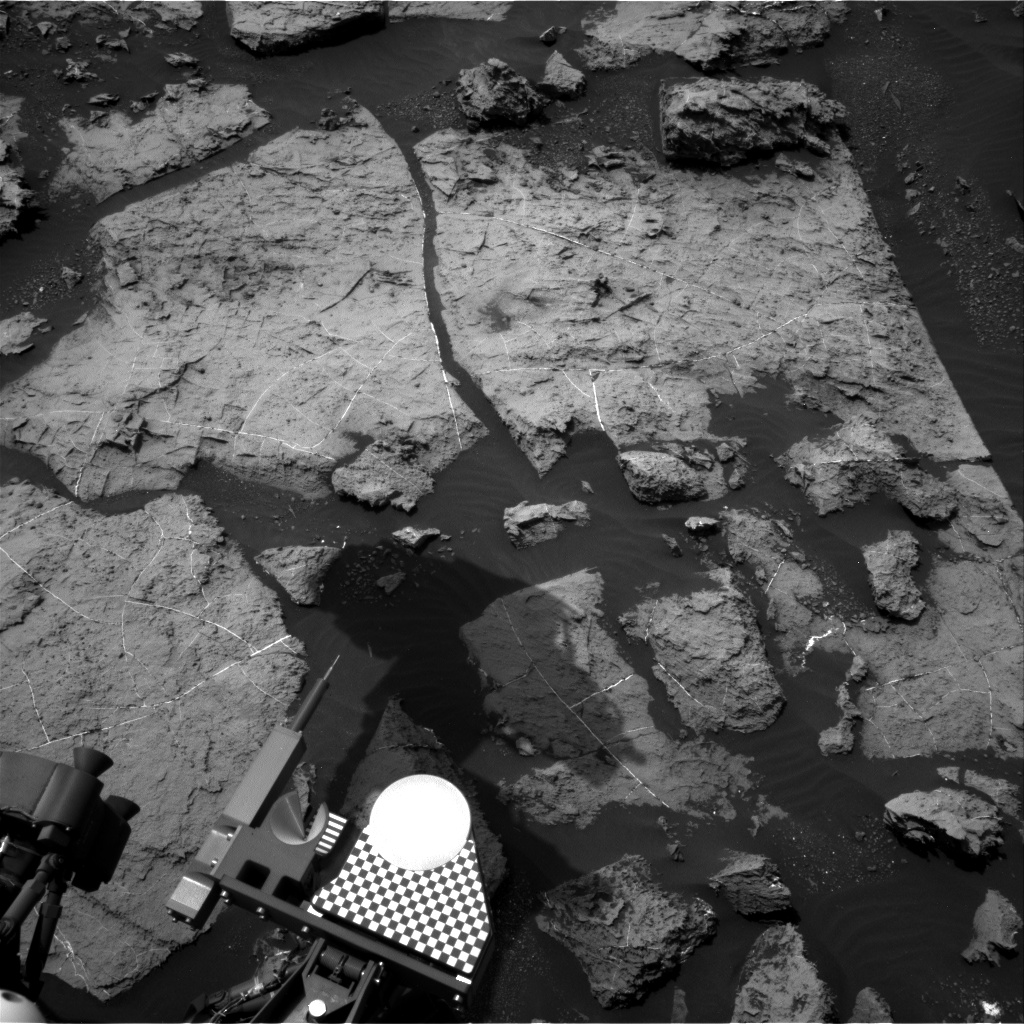 Nasa's Mars rover Curiosity acquired this image using its Right Navigation Camera on Sol 1494, at drive 2046, site number 58