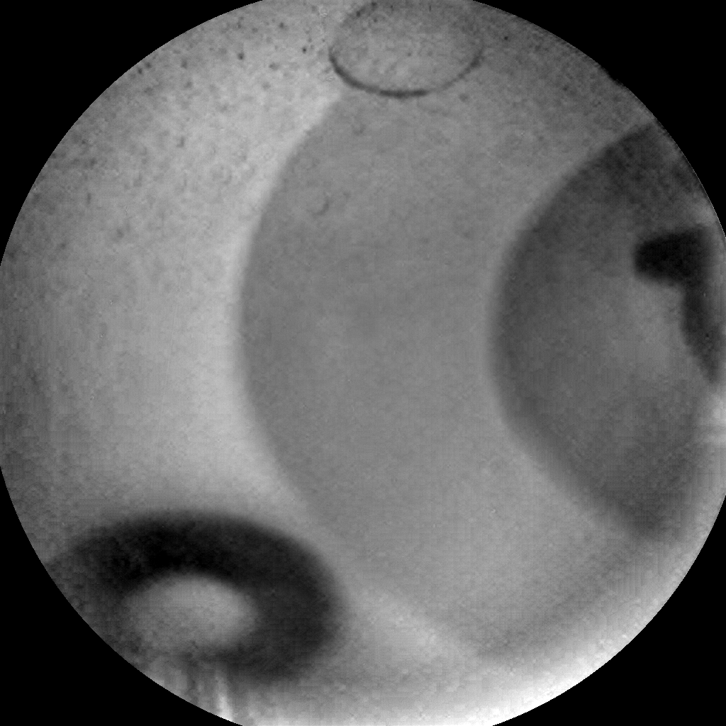 Nasa's Mars rover Curiosity acquired this image using its Chemistry & Camera (ChemCam) on Sol 1613, at drive 924, site number 61