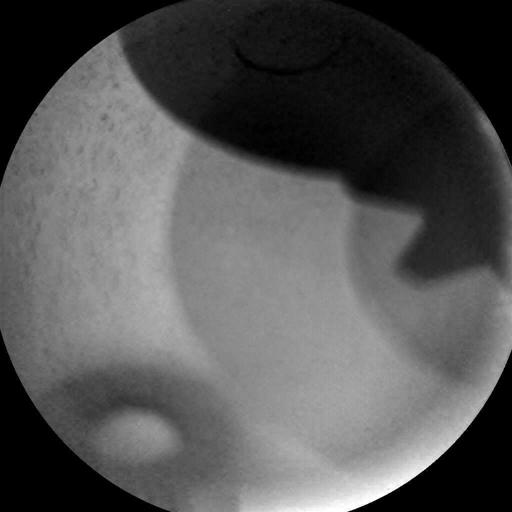 Nasa's Mars rover Curiosity acquired this image using its Chemistry & Camera (ChemCam) on Sol 1742, at drive 1626, site number 64