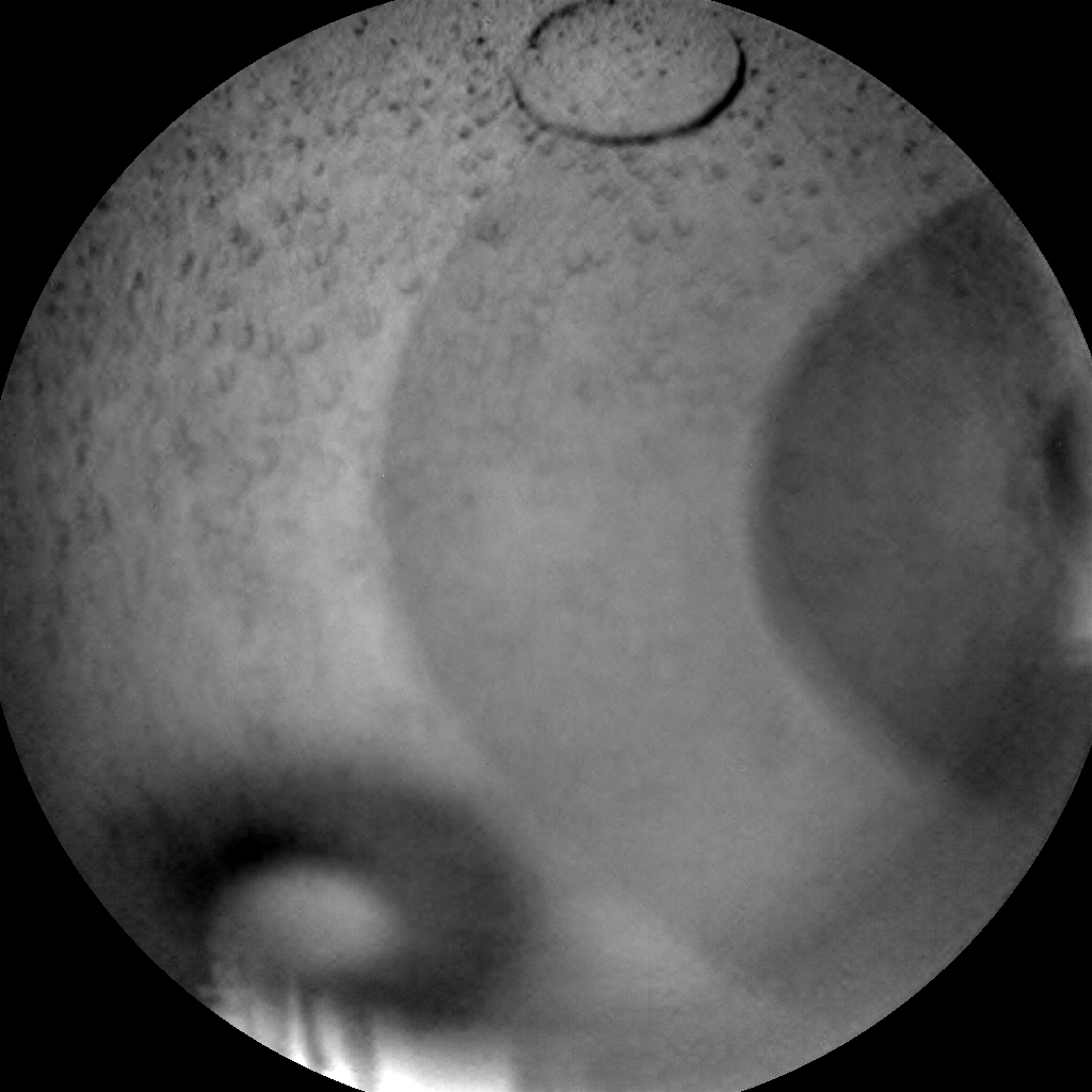 Nasa's Mars rover Curiosity acquired this image using its Chemistry & Camera (ChemCam) on Sol 1801, at drive 2720, site number 65