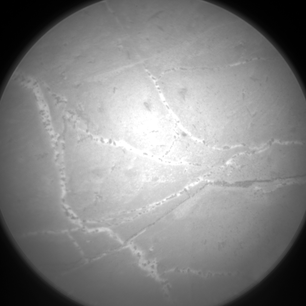 Nasa's Mars rover Curiosity acquired this image using its Chemistry & Camera (ChemCam) on Sol 2171, at drive 2464, site number 72