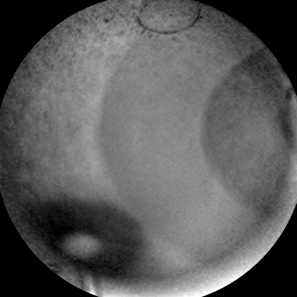 Nasa's Mars rover Curiosity acquired this image using its Chemistry & Camera (ChemCam) on Sol 2230, at drive 550, site number 73