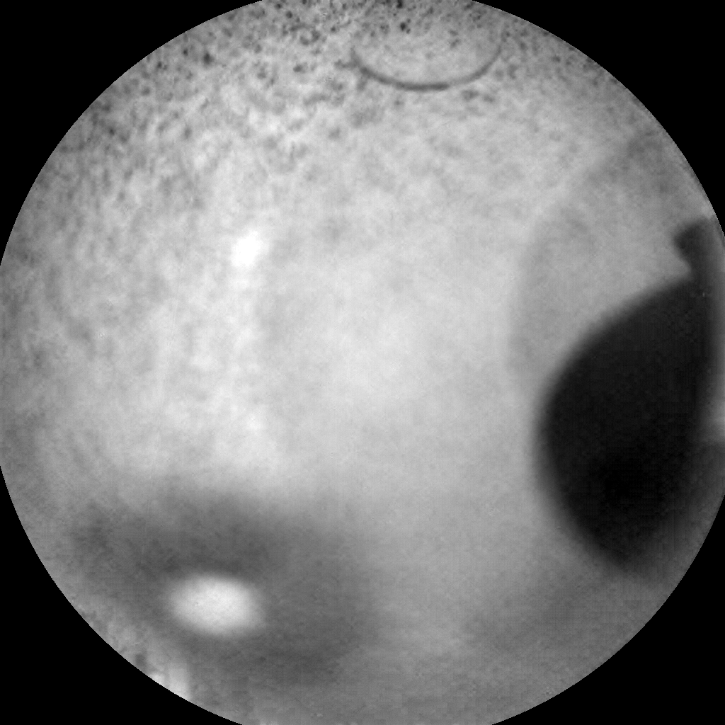 Nasa's Mars rover Curiosity acquired this image using its Chemistry & Camera (ChemCam) on Sol 2748, at drive 2008, site number 79