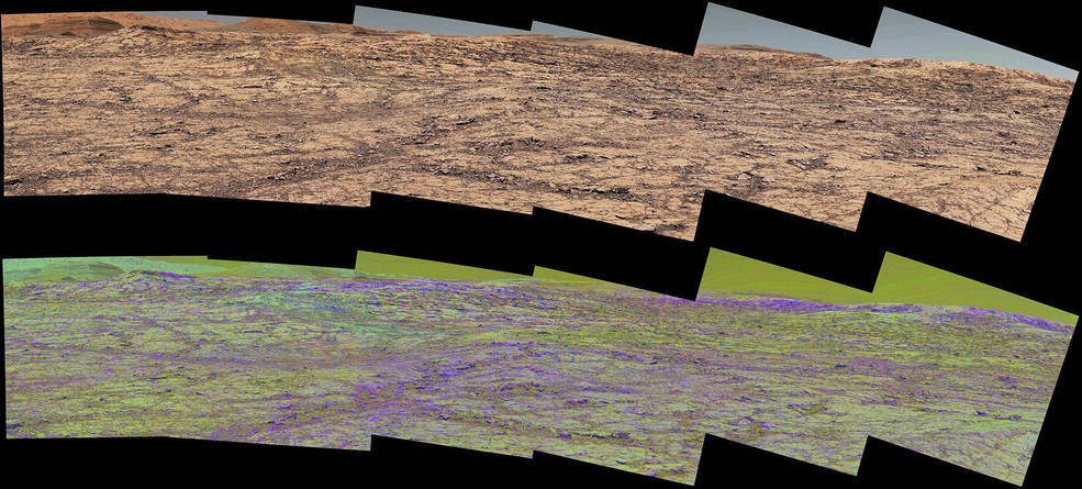 This pair of images from the Mast Camera (Mastcam) on NASA's Curiosity rover illustrates how special filters are used to scout terrain ahead for variations in the local bedrock. (Credits: NASA/JPL-Caltech/MSSS/ASU)