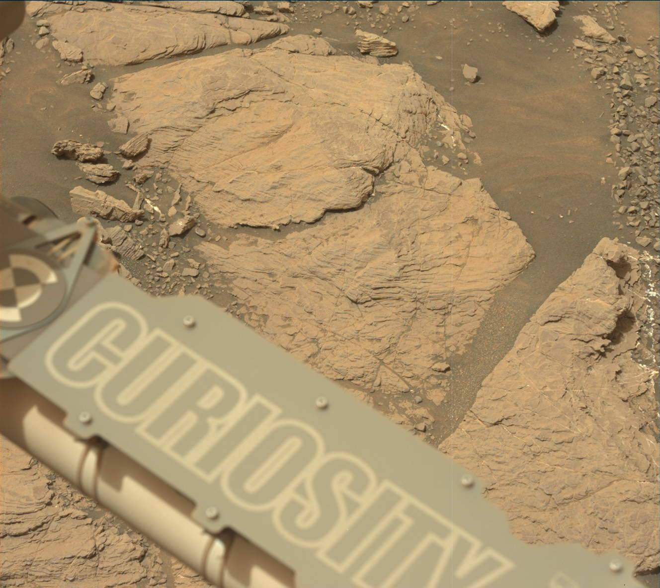 "NASA's Curiosity Mars took this image with its Mastcam on Feb. 10, 2019 (Sol 2316). The rover is currently exploring a region of Mount Sharp nicknamed ""Glen Torridon"" that has lots of clay minerals."