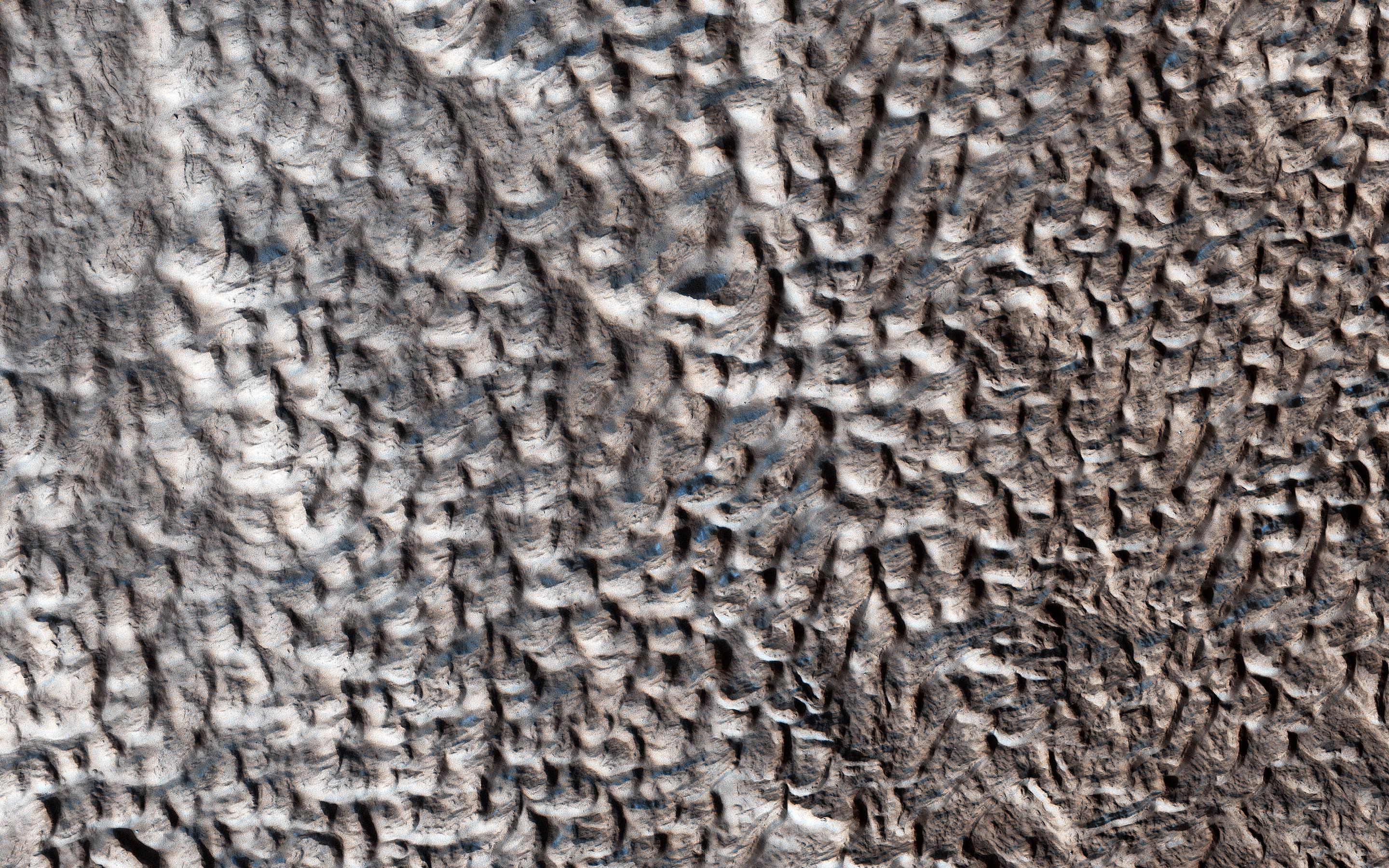 This image acquired on December 11, 2018 by NASAs Mars Reconnaissance Orbiter, shows a surface texture of interconnected ridges and troughs, referred to as brain terrain, found throughout the mid-latitude regions of Mars.