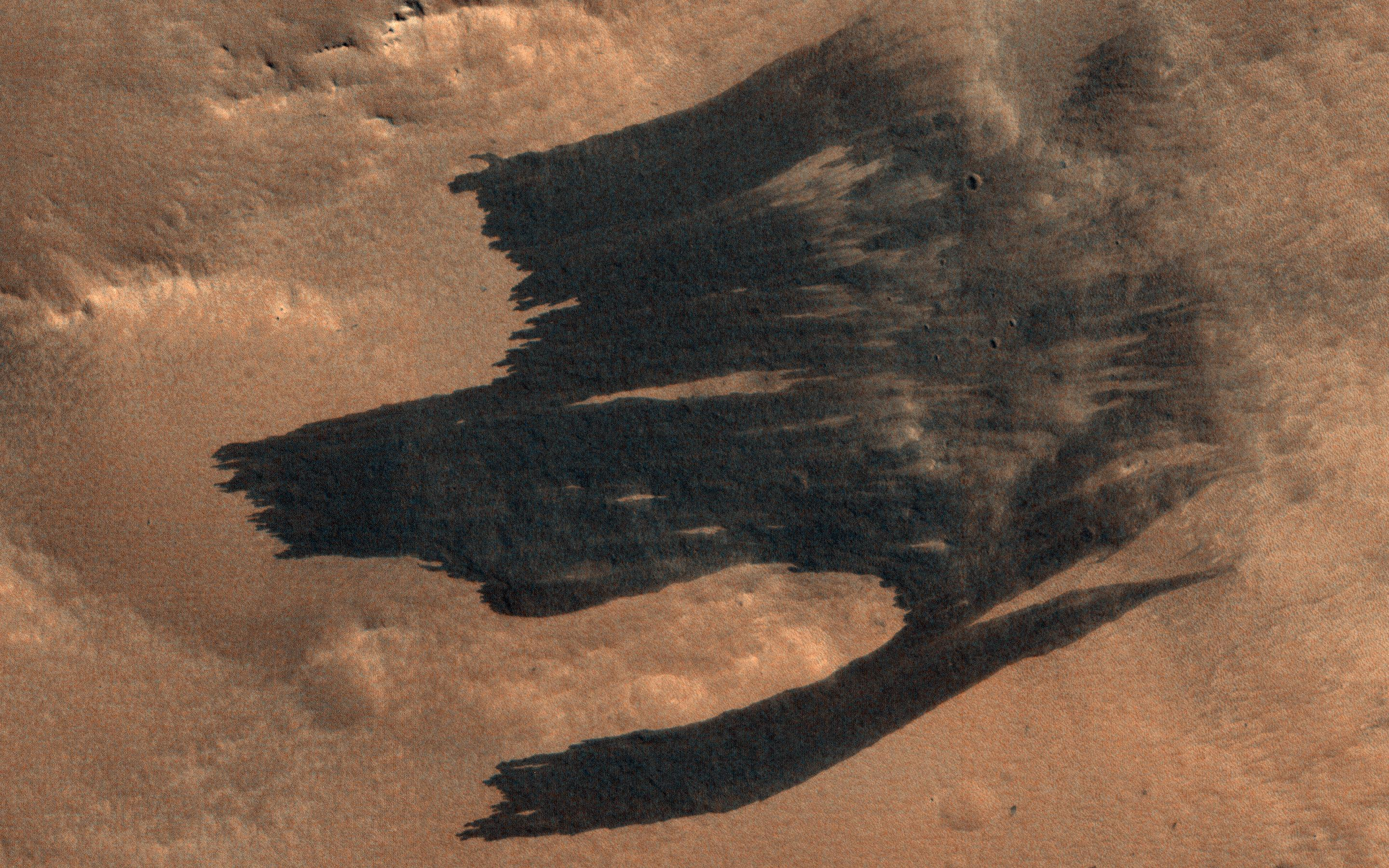 This image acquired on January 19, 2019 by NASAs Mars Reconnaissance Orbiter, shows what appears to be a new impact cluster and, extending downhill from the craters, new dark slope streaks.