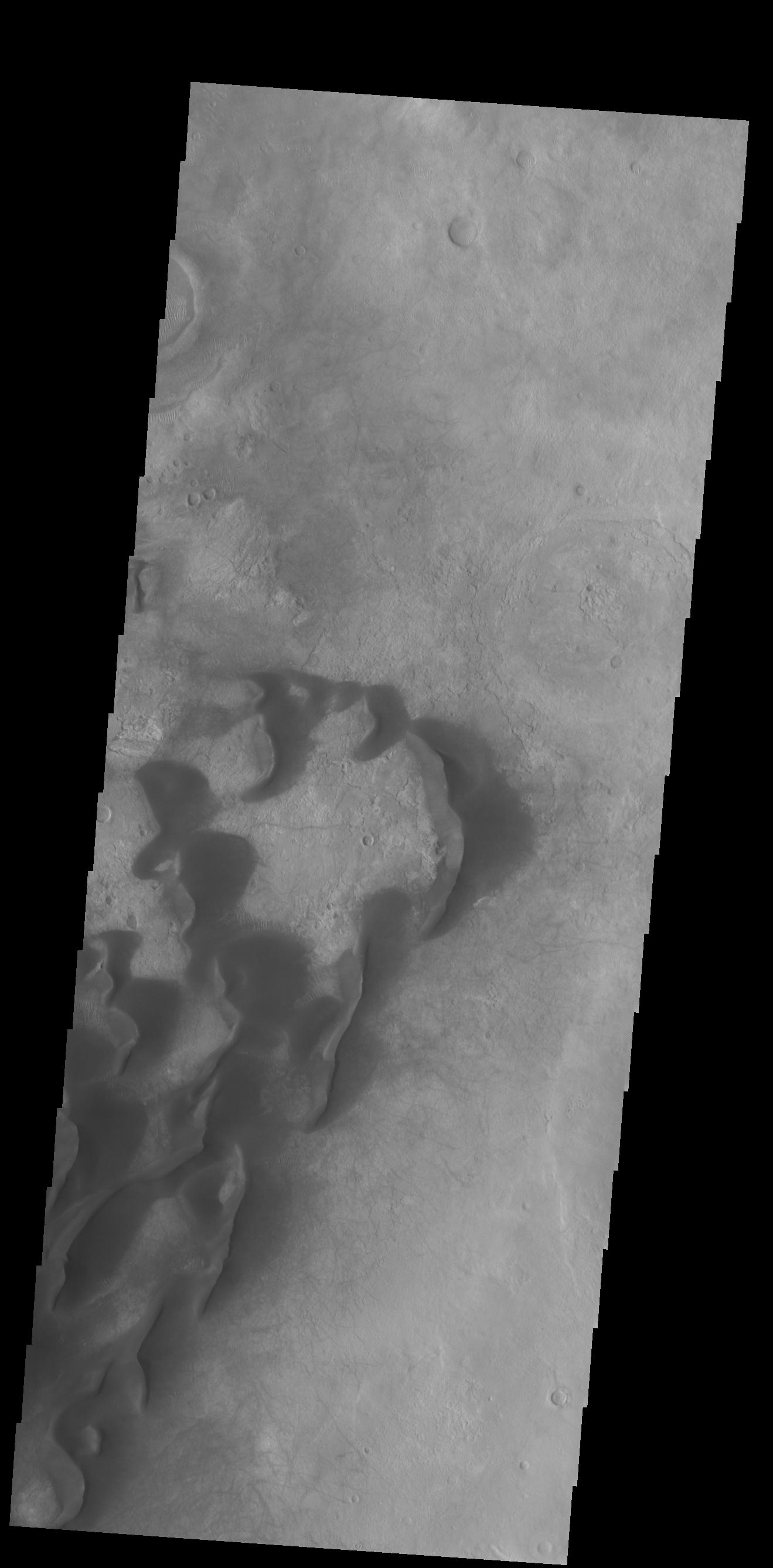 This image from NASAs Mars Odyssey shows large individual dunes on the floor of Kaiser Crater.