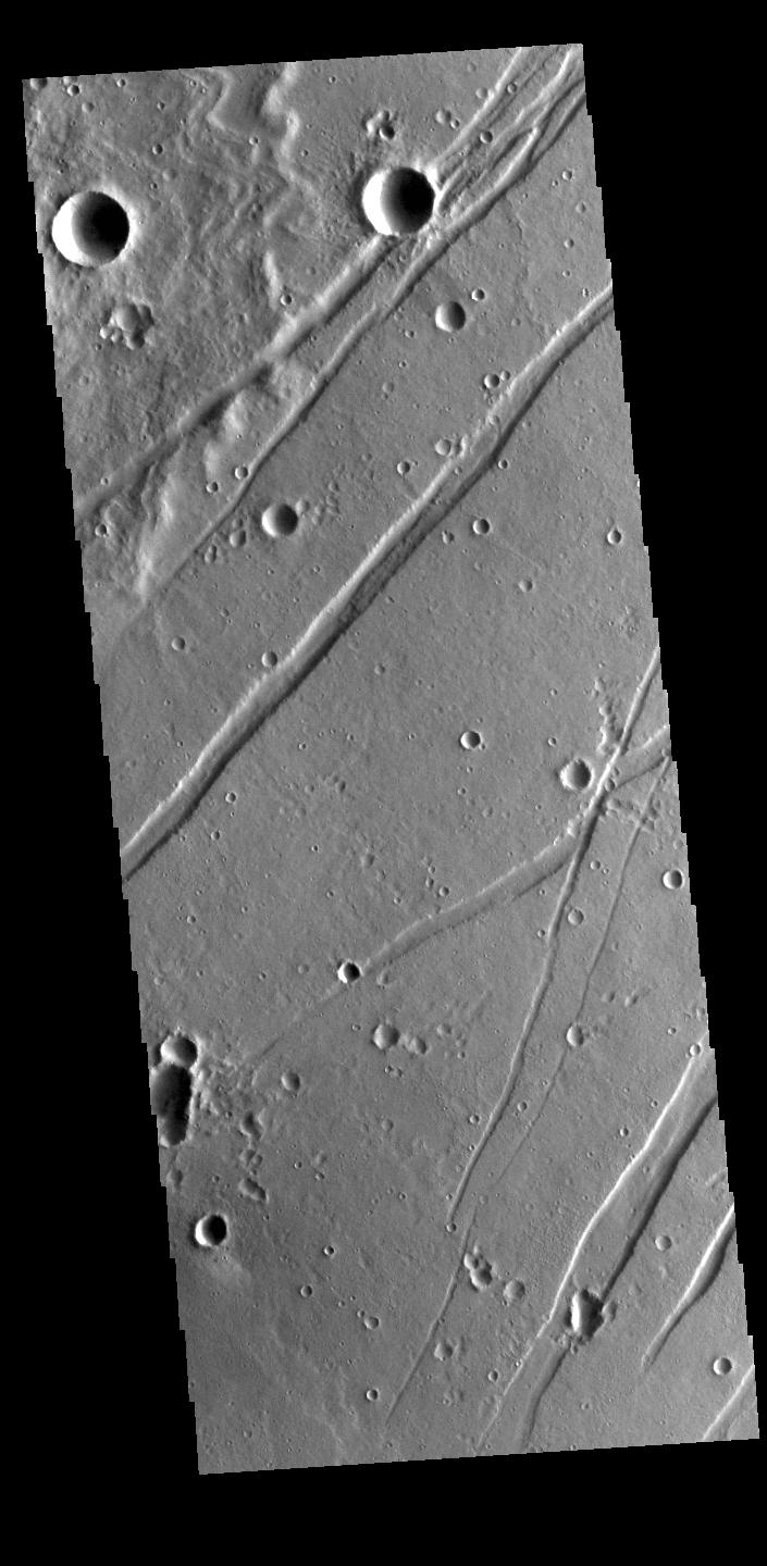 This image from NASAs Mars Odyssey shows linear depressions, graben, called Labeatis Fossae.