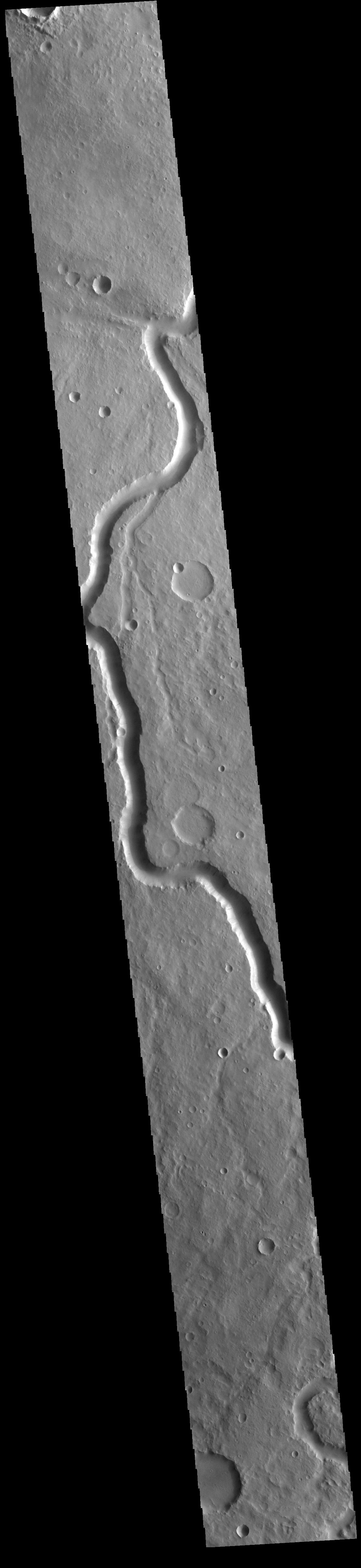 This image from NASAs Mars Odyssey shows a section of Scamander Vallis. Scamander Vallis is located in northern Terra Sabaea.