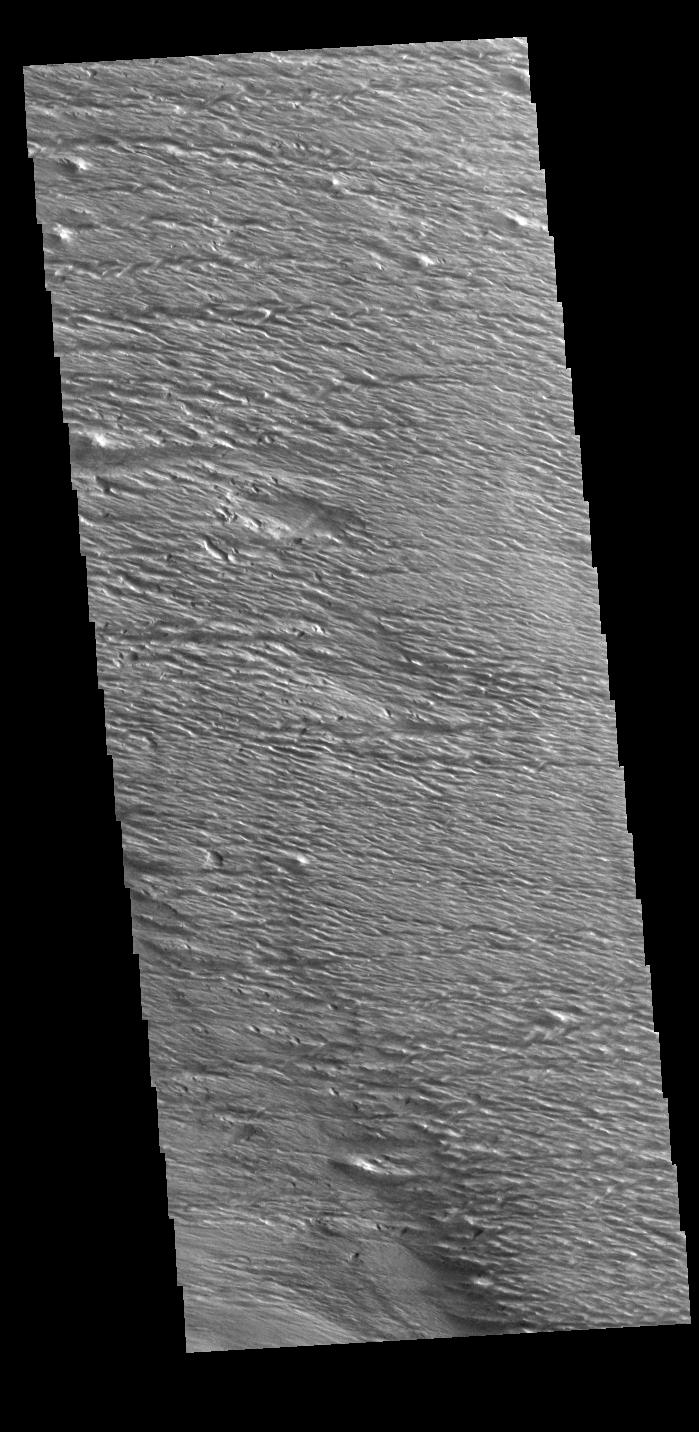 This image from NASAs Mars Odyssey shows an area at the equator near Gordii Dorsum.