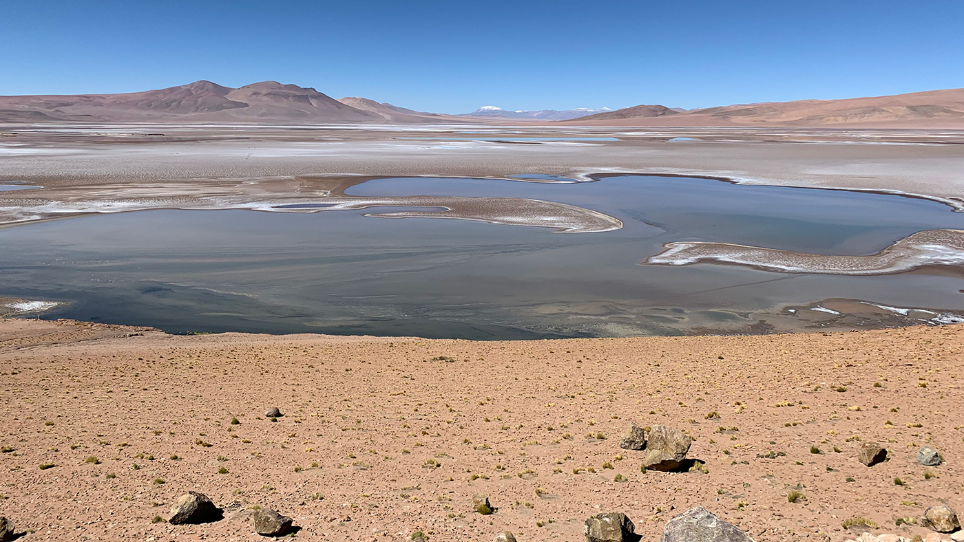 Filled with briny lakes, the Quisquiro salt flat in South America's Altiplano represents the kind of landscape that scientists think may have existed in Gale Crater, which NASA's Curiosity rover is exploring.