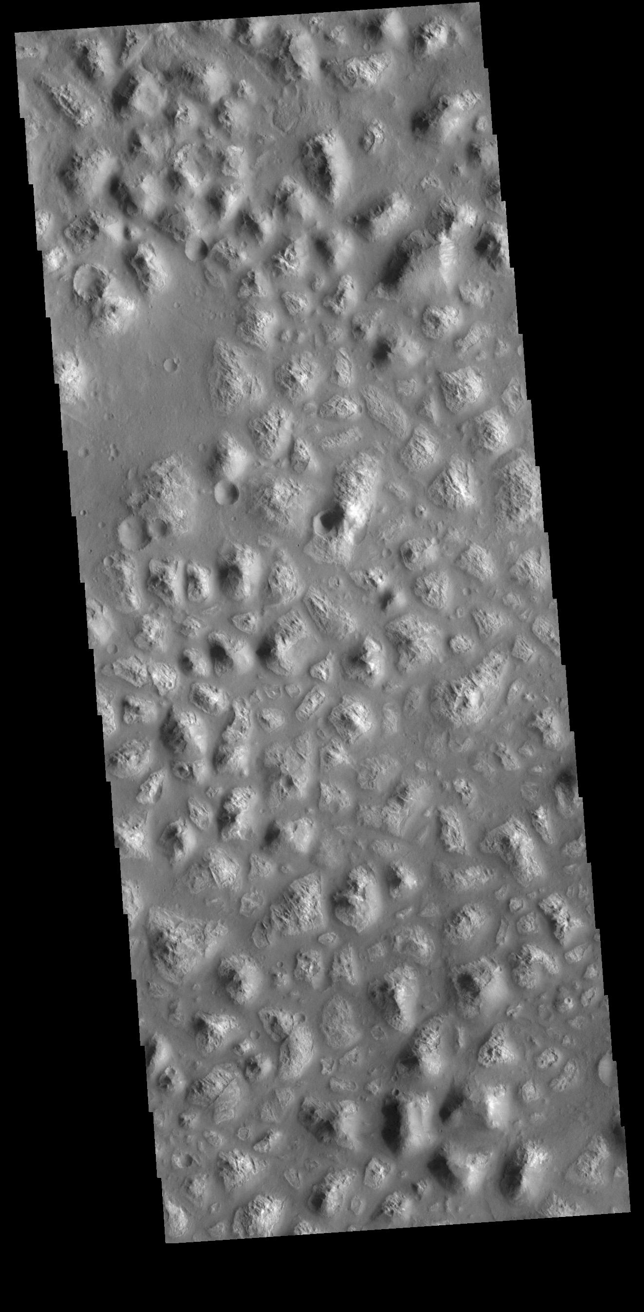 This image from NASAs Mars Odyssey shows part of Ariadnes Colles. The term colles means hills or knobs.
