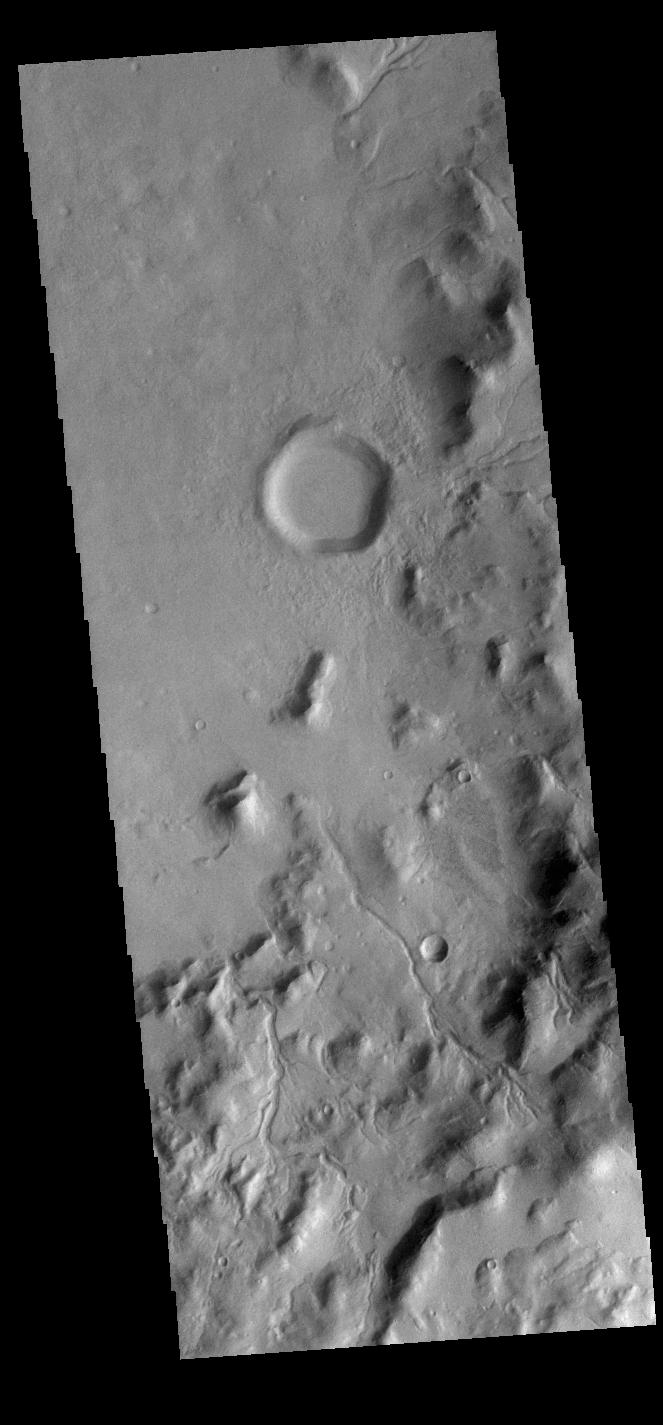 This image from NASAs Mars Odyssey shows multiple channels dissecting the inner rim of this unnamed crater in Terra Cimmeria.