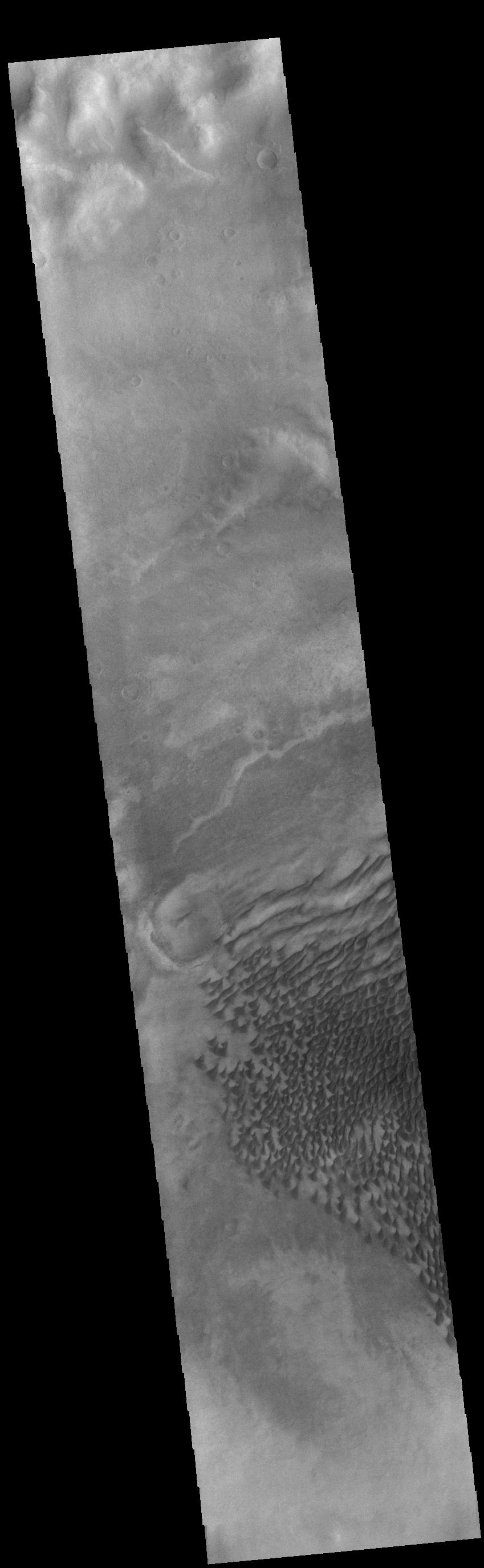 This image from NASAs Mars Odyssey shows part of the floor of Russell Crater.