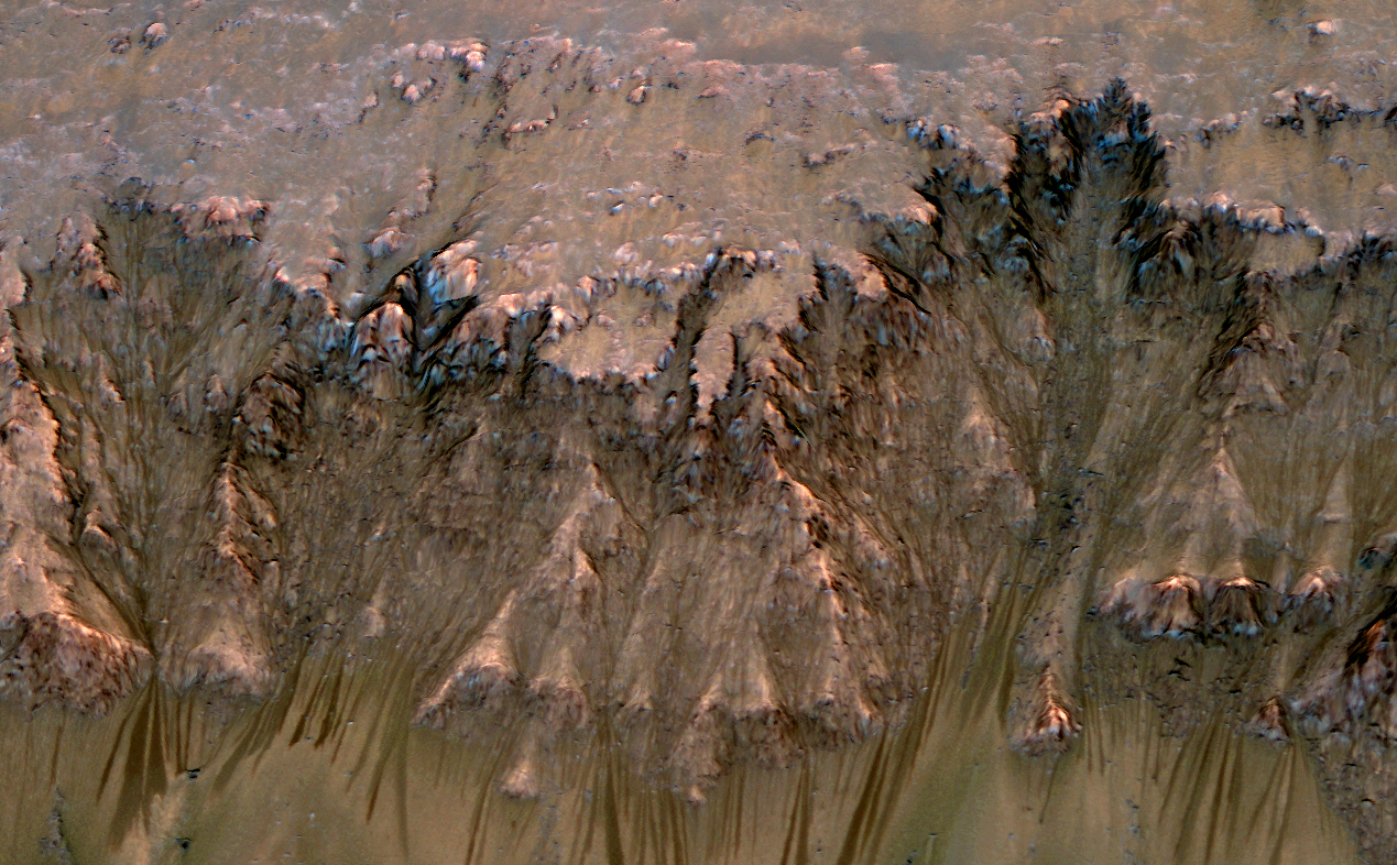 An image combining orbital imagery with 3-D modeling shows flows that appear in spring and summer on a slope inside Mars' Newton crater.