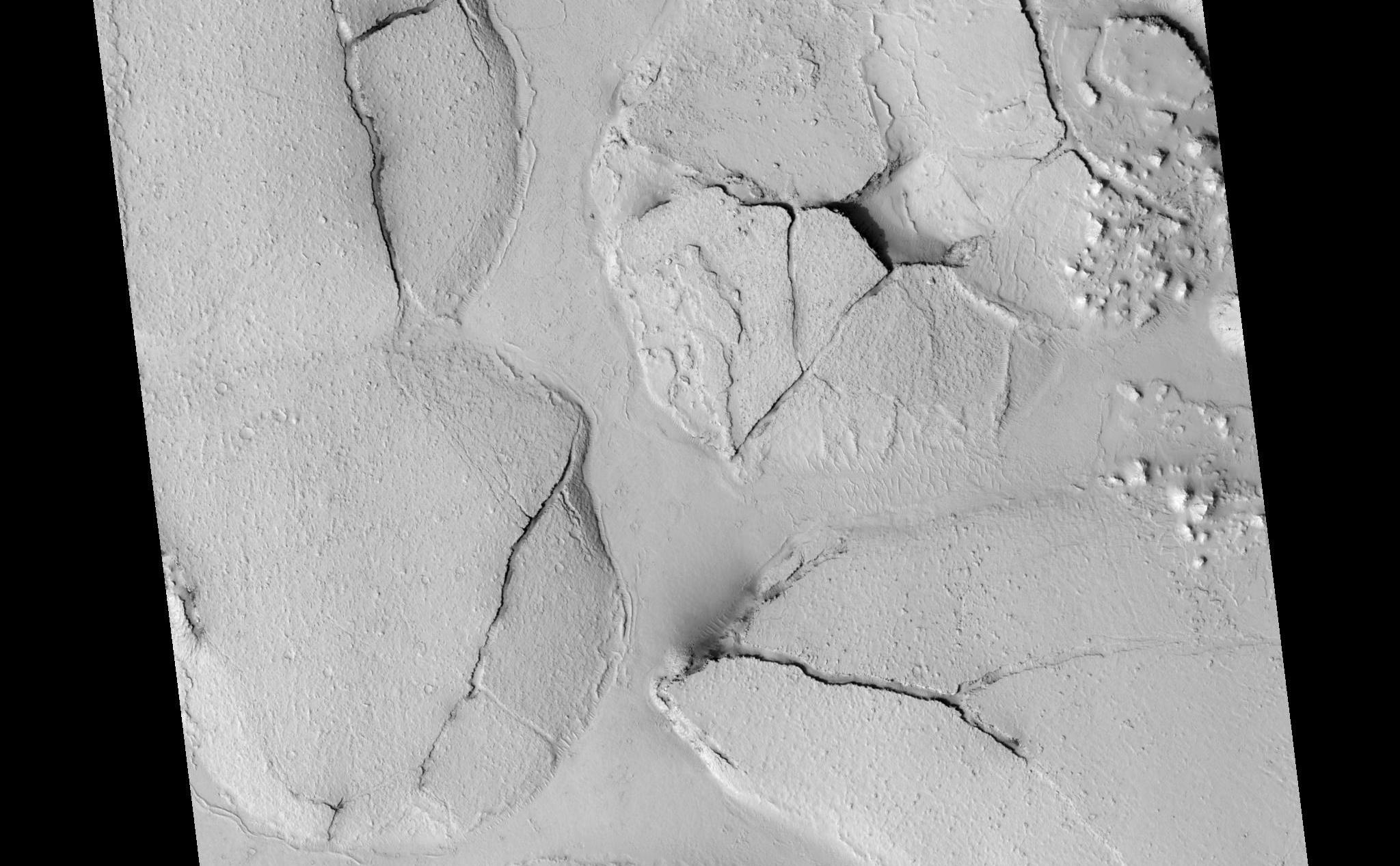 This HiRISE image (PSP_003597_1765), shows fractured mounds on the southern edge of Elysium Planitia.  The mounds are typically a few kilometers in diameter and about 200 feet tall. The fractures that crisscross their surfaces are dilational (extensional) in nature, suggesting that the mounds formed by localized uplift (i.e., they were pushed up from below).  The mounds are probably composed of solidified lava. They are contiguous with, and texturally similar to, the flood lavas that blanket much of Elysium Planitia, and, where dilation cracks provide cross-sectional exposure, the uplifted material is rocky.  Patches of mechanically weak and disrupted material overlie the rocky mound material. This is particularly conspicuous in the northeast corner of the HiRISE image. These patches may be remnants of a layer that was once more continuous but has been extensively eroded. Smooth lava plains fill the low-lying areas between the mounds. They are riddled with sinuous pressure ridges. The entire area is covered by a relatively thin layer of dust and sand.