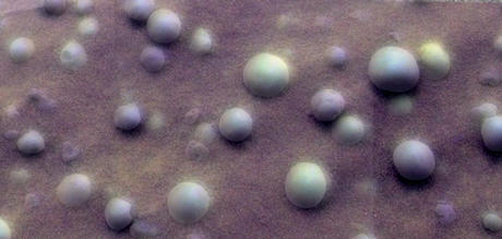 This mosaic image shows an extreme close-up of round, blueberry-shaped formations in the martian soil near a part of the rock outcrop at Meridiani Planum called Stone Mountain