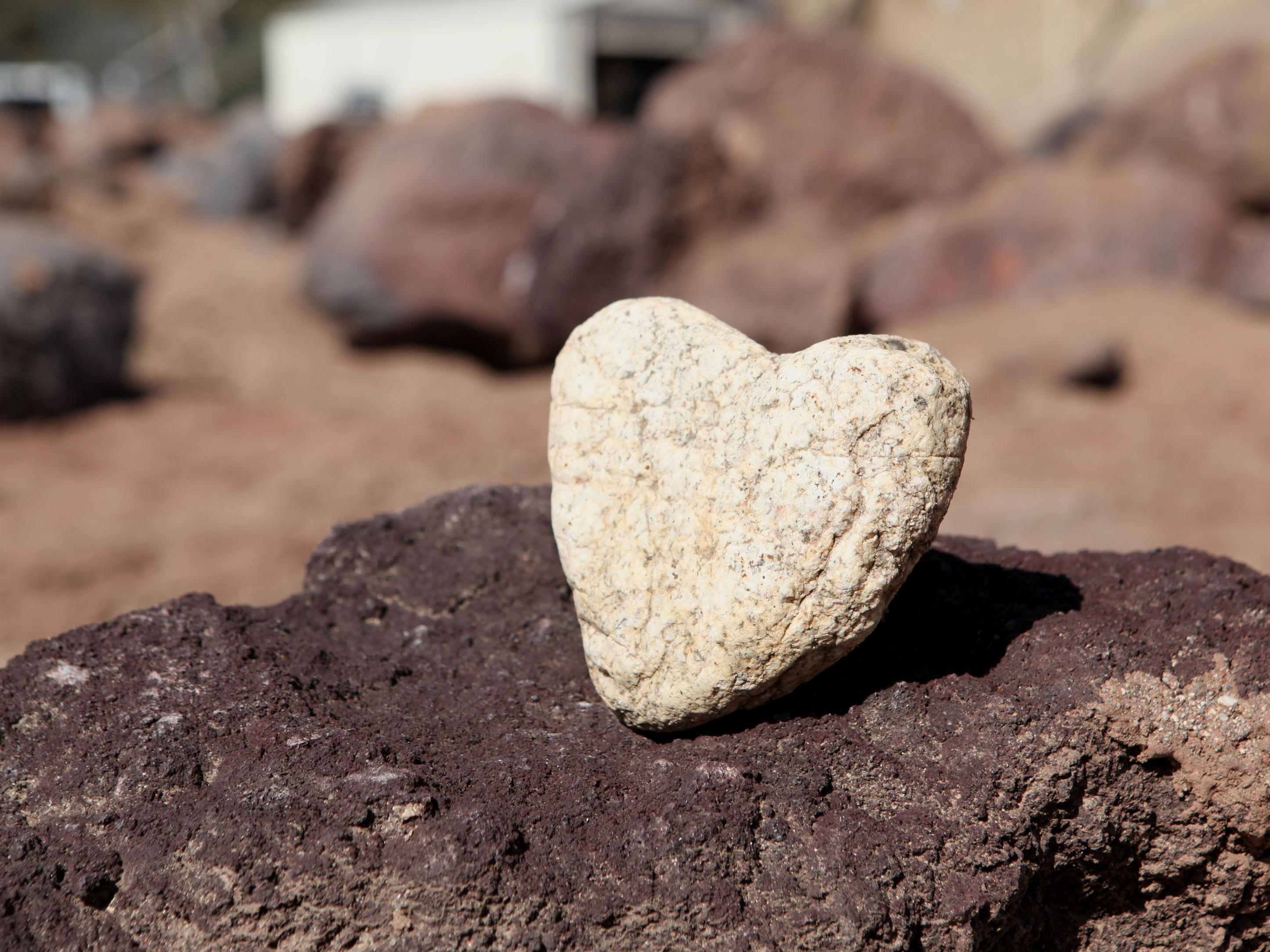 This heart-shaped granite rock was spotted in JPL's Mars Yard just in time for Valentine's Day.  Engineers were driving the Earth-bound copy of the Curiosity rover, informally named Maggie, for tests that day.