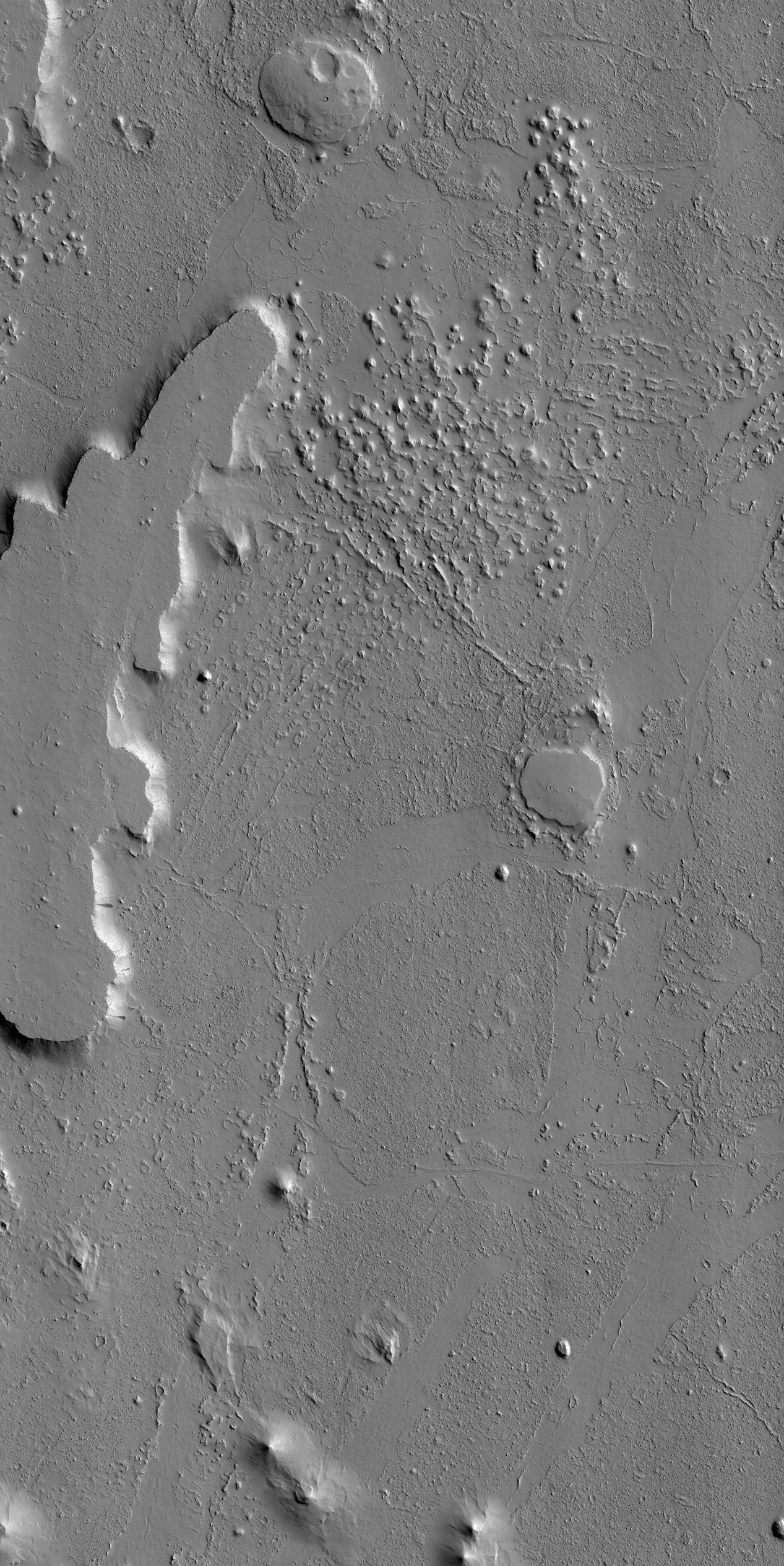 Ring and Cone Structures and Platy-Ridged Terrain in Amazonis Planitia