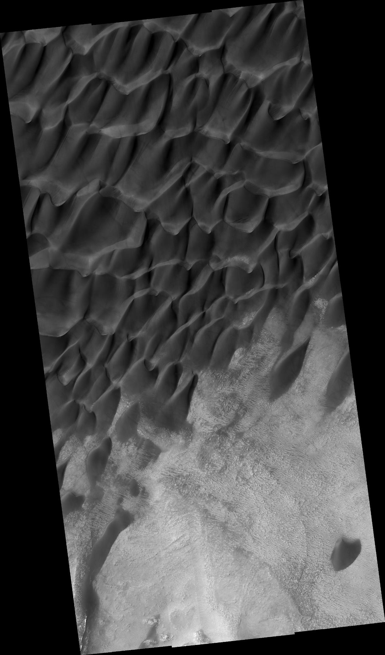 This dune field in Aonia Terra shows sand dunes with a variety of morphologies.  These complex shapes often indicate that the dominating winds change direction, either over time or from one location to the next.