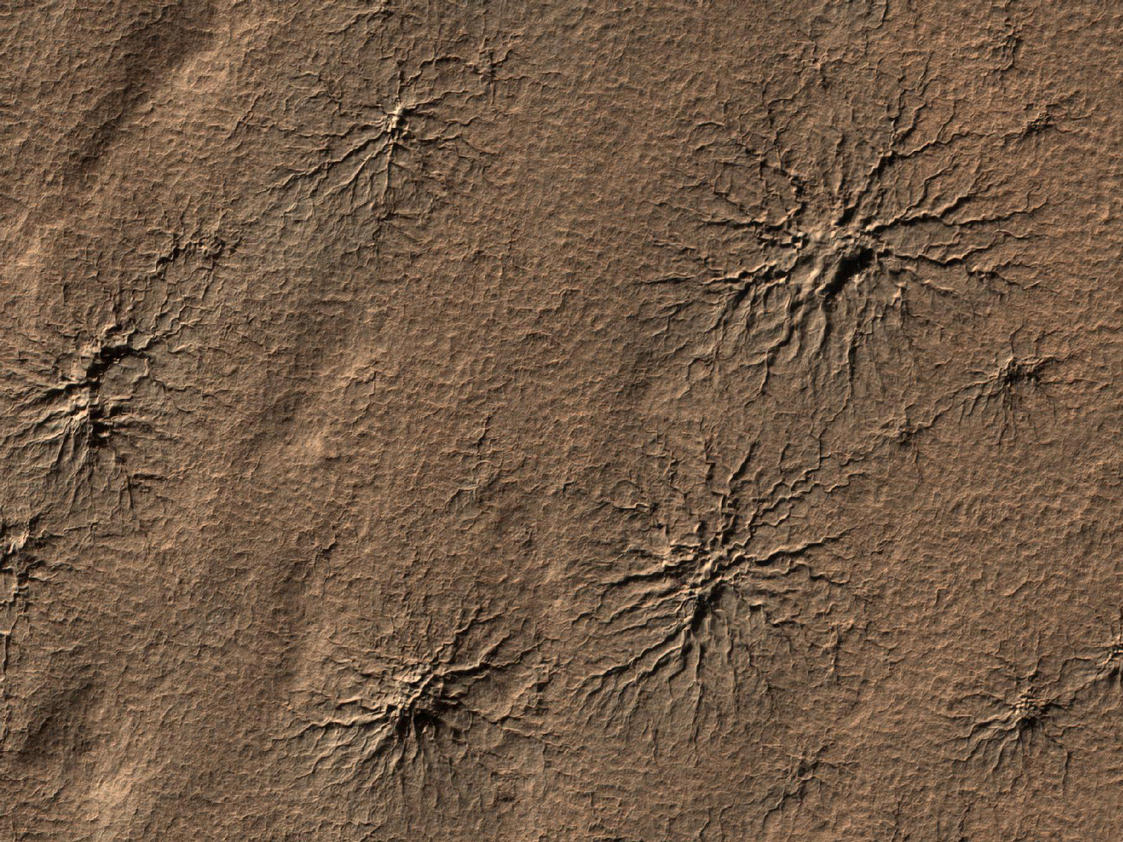 "What appear to be spiders scampering across the martian landscape are actually cracks in the surface of the southern polar region on Mars, seen by the Mars Reconnaissance Orbiter on August 23, 2009.  Caused as carbon dioxide ice evaporates and escapes into the atmosphere, there is no escaping that these ""araneiform"" features look like our 8 legged friends!"