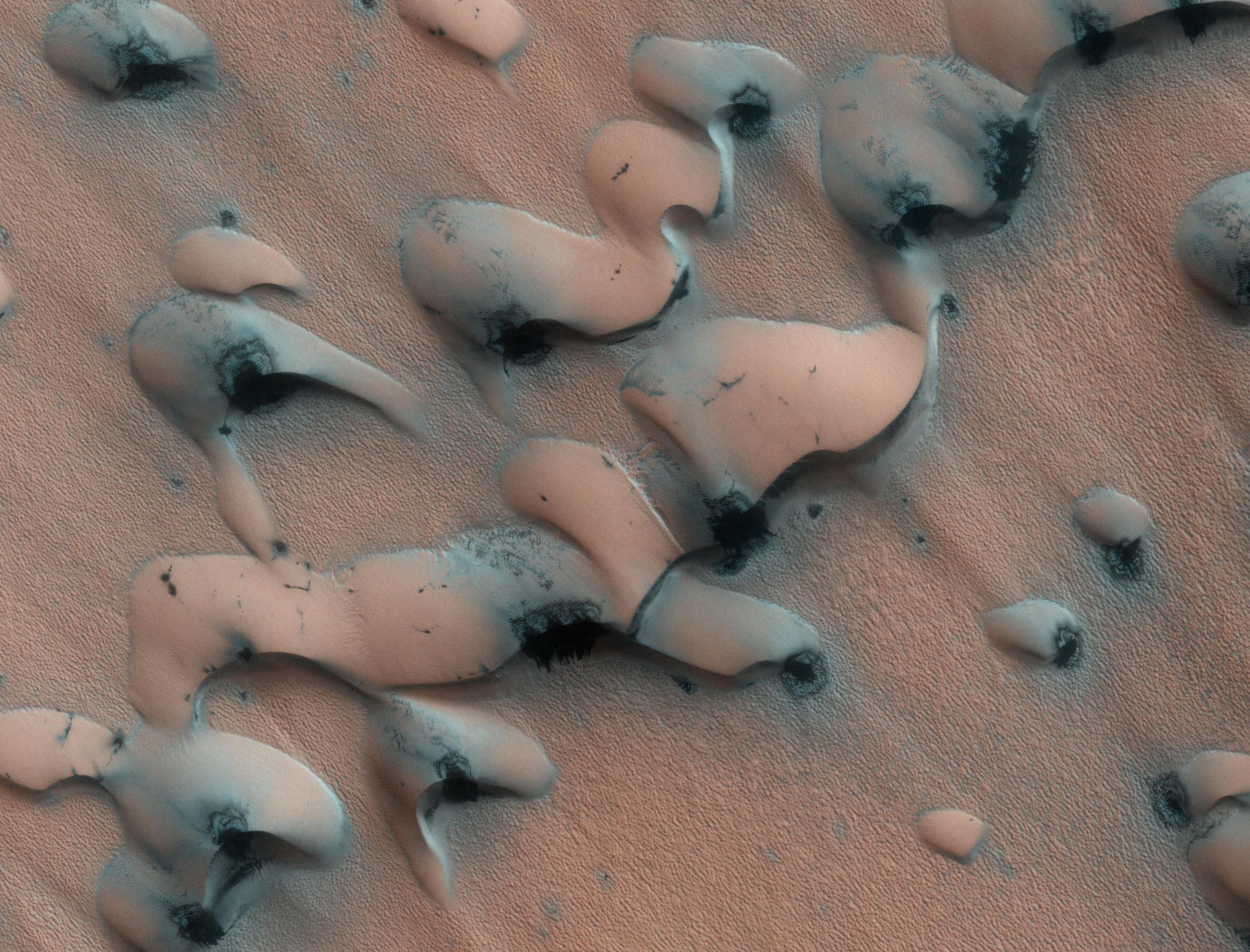 "This image shows dunes near the north pole of Mars. The north pole is surrounded by a vast ""sea"" of basaltic sand dunes, and the dunes imaged here are similar to barchan dunes that are commonly found in desert regions on Earth."