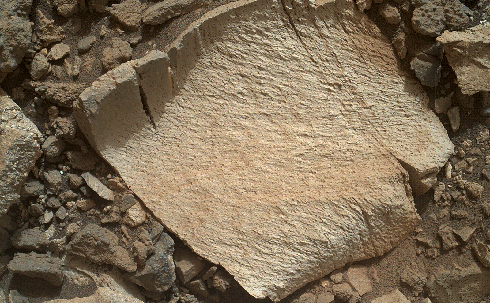 "A rock fragment dubbed ""Lamoose"" is shown in this picture taken by the Mars Hand Lens Imager (MAHLI) on NASA's Curiosity rover."