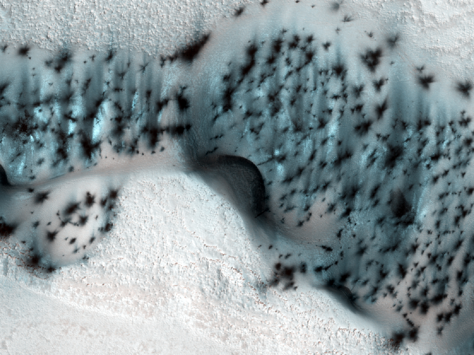 These barchan (crescent-shaped) sand dunes are found within the North Polar erg of Mars.