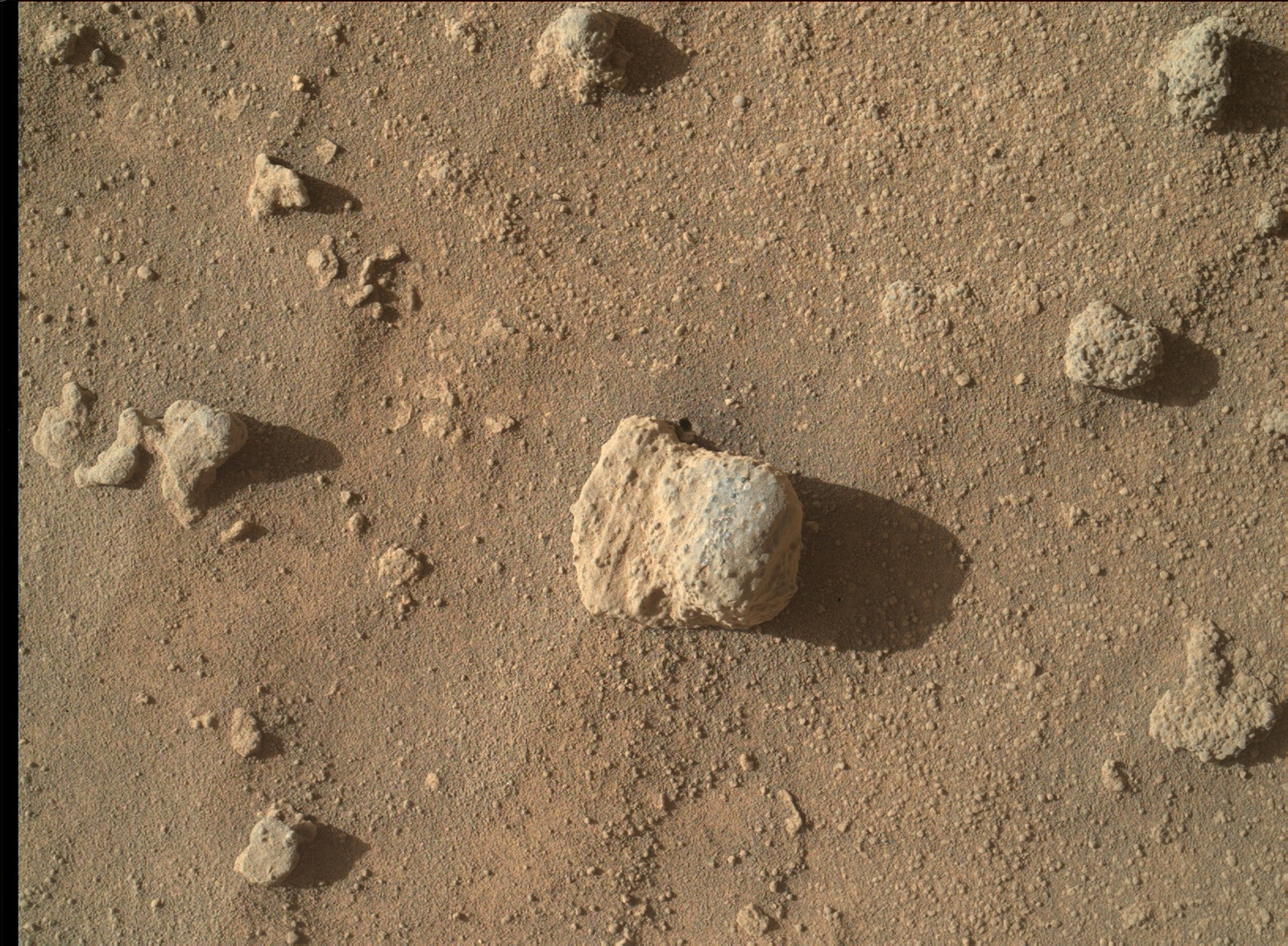 The nodule in the center of this March 10, 2016, image from the Mars Hand Lens Imager (MAHLI) on NASA's Curiosity Mars rover shows individual grains of sand and (on the right) laminations from the sandstone deposit in which the nodule formed..