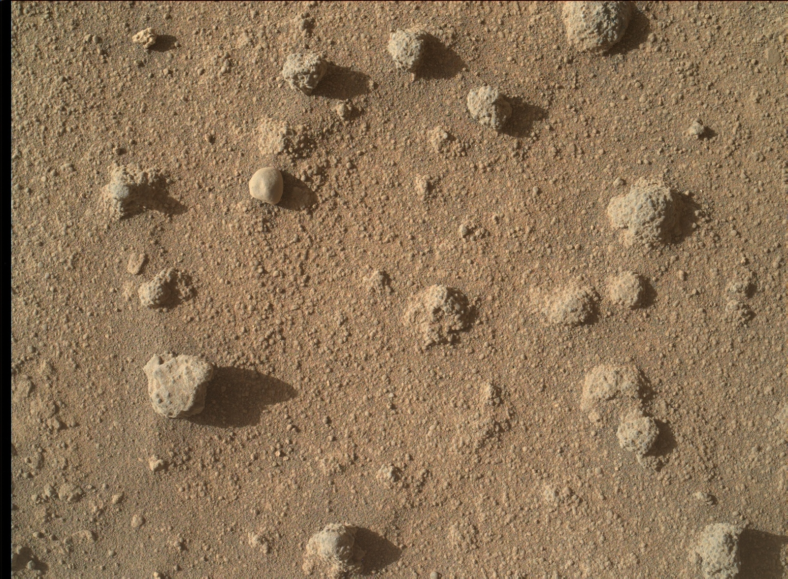 This view shows nodules exposed in sandstone that is part of the Stimson geological unit on Mount Sharp, Mars.  The nodules can be seen to consist of grains of sand cemented together.