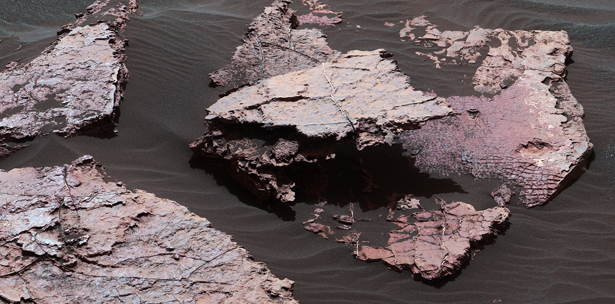 "A grid of small polygons on the Martian rock surface near the right edge of this view may have originated as cracks in drying mud more than 3 billion years ago. Multiple Dec. 20, 2016, images from the Mastcam on NASA's Curiosity Mars rover were combined for this view of a rock called ""Squid Cove."""