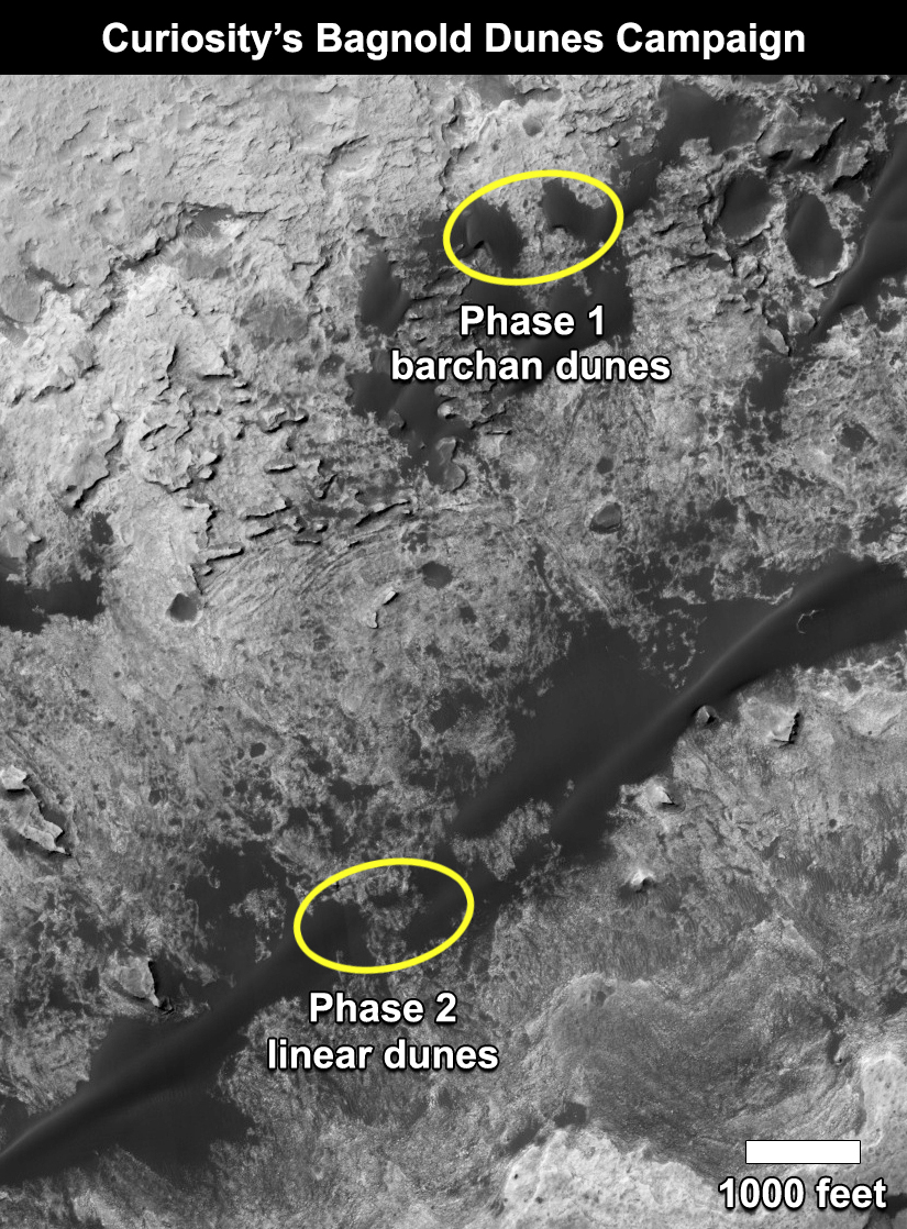 Curiosity's Bagnold Dunes Campaign: Two Types of Dunes