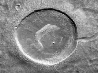 Crater Tadpoles